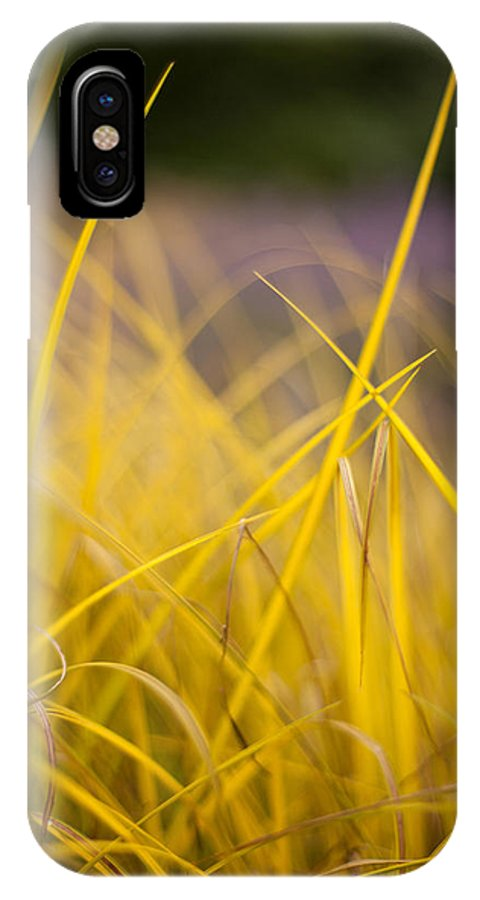 Grass IPhone X / XS Case featuring the photograph Grass Abstract 3 by Mike Reid