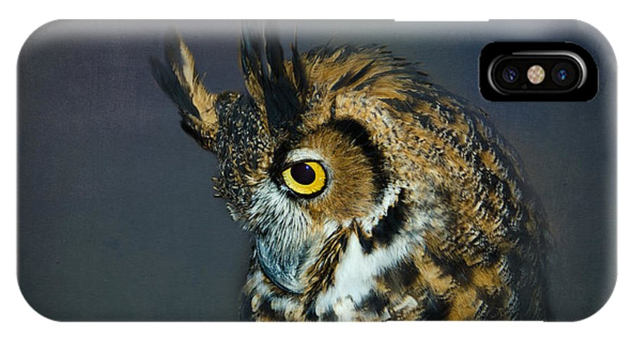 Great Horned Owl IPhone X Case featuring the photograph Great Horned Owl by Betty LaRue