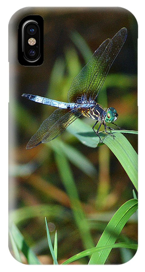 Dragonfly IPhone X / XS Case featuring the photograph Green And Blue Dragonfly by Roy Williams