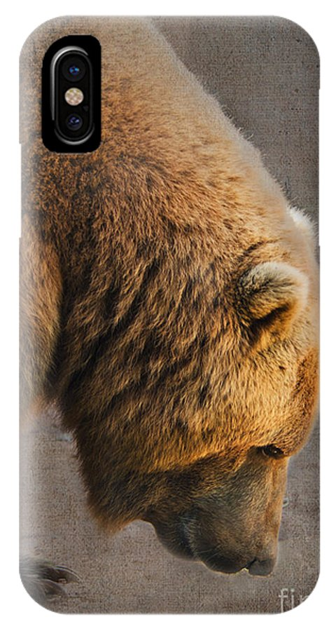 Bear IPhone X Case featuring the photograph Grizzly Hanging Head by Betty LaRue