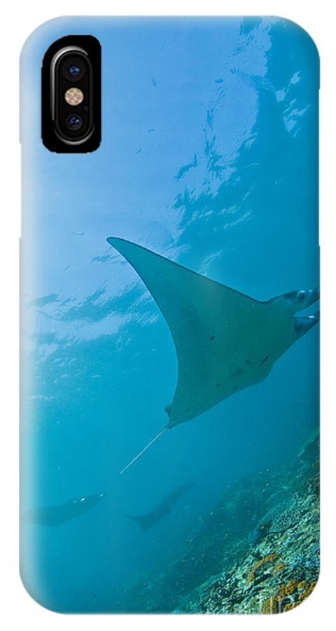 Ray IPhone X Case featuring the photograph Group Of Manta Rays In Blue Water by Mathieu Meur