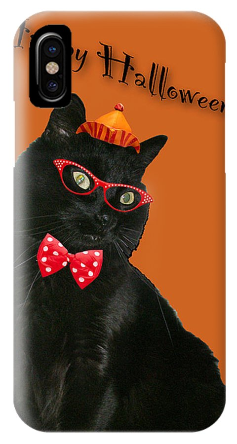 Halloween IPhone X Case featuring the photograph Halloween Card - Black Cat Ready To Party by Mother Nature