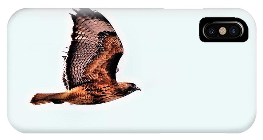Hawks IPhone X Case featuring the digital art Hawk In Flight - 1 by Don Mann
