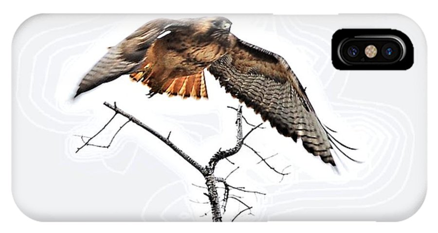 Hawks IPhone X Case featuring the digital art Hawk Taking Flight by Don Mann