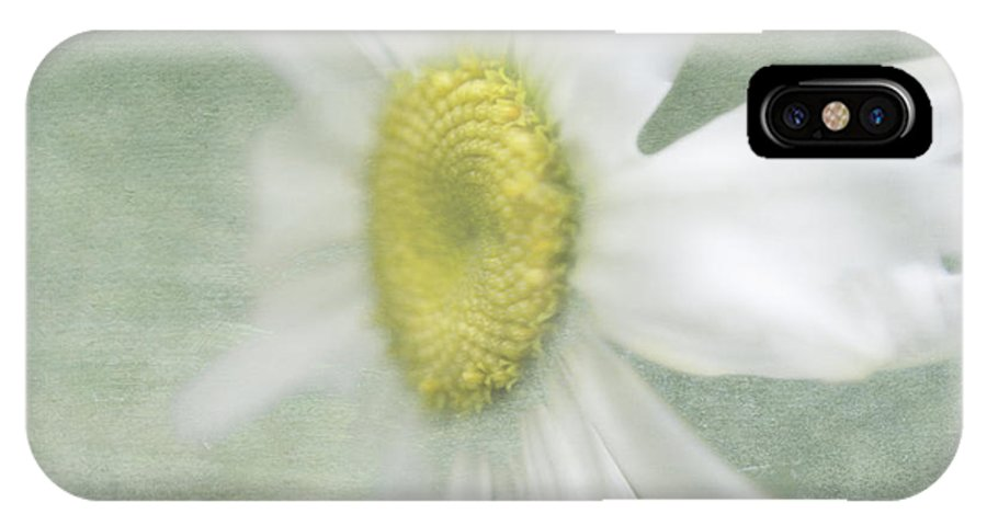 White IPhone X Case featuring the photograph Hazy Daisy by Cheryl Butler
