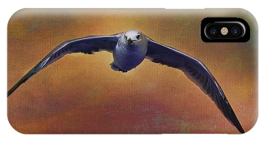 Seagull IPhone X Case featuring the photograph Heading Home by Deborah Benoit
