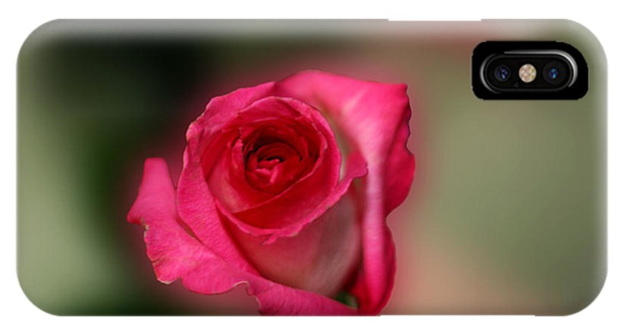 Rose IPhone X Case featuring the photograph Heavenly Rose by Michael Waters