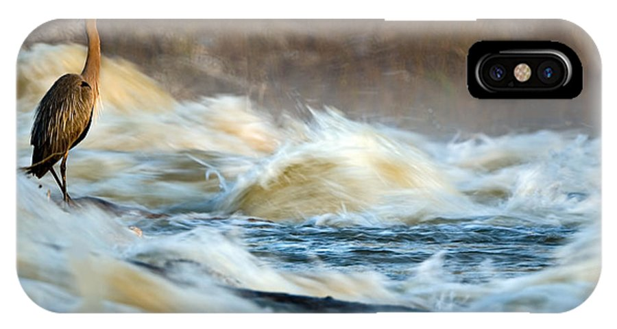 2007 IPhone X Case featuring the photograph Heron In Centaur Shute by Robert Charity