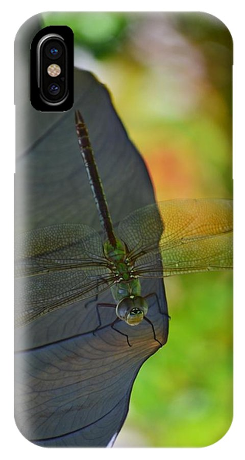 Dragonfly IPhone X / XS Case featuring the photograph Hiding Out by Melanie Moraga