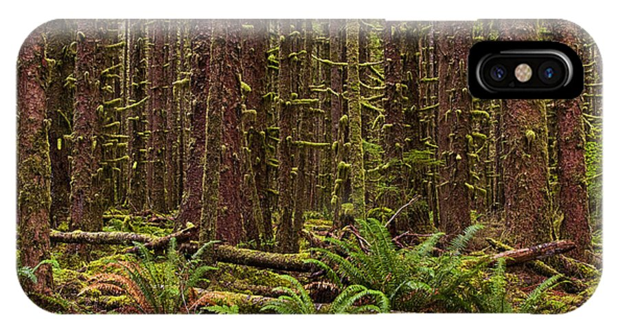 Big Leaf Maple Trees IPhone X Case featuring the photograph Hoh Rainforest by Mark Kiver