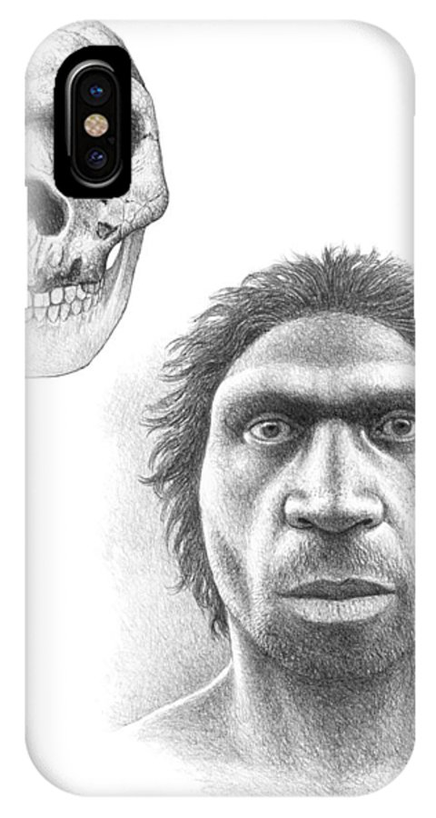 Heidelberg Man IPhone X / XS Case featuring the photograph Homo Heidelbergensis Skull And Face by Mauricio Anton