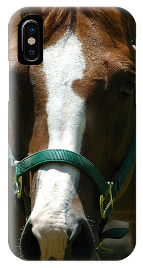 Horse IPhone X Case featuring the photograph Horse Face by David Weeks