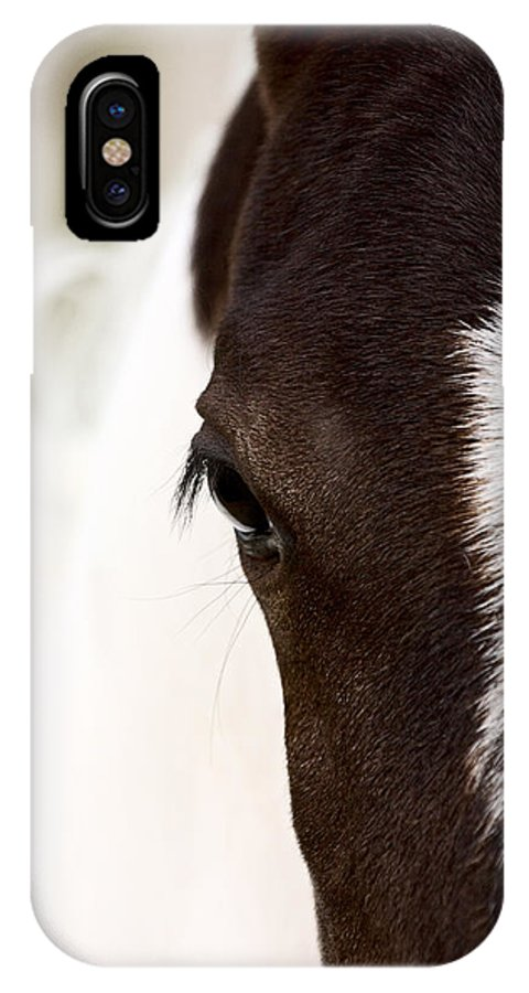 Animal IPhone X Case featuring the photograph Horse Mare Saskatchewan Field by Mark Duffy