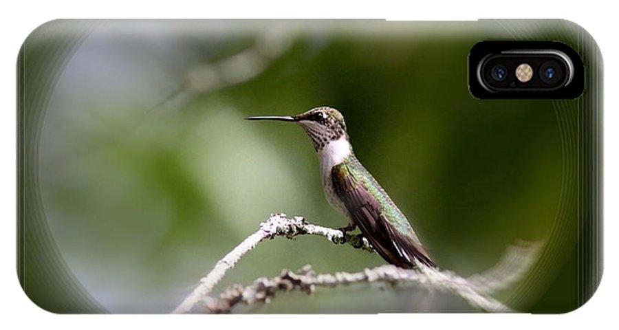 Hummingbird IPhone X Case featuring the photograph Hummingbird - Bird by Travis Truelove