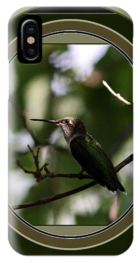 Hummingbird IPhone X Case featuring the photograph Hummingbird - Card - Glint Of The Eye by Travis Truelove