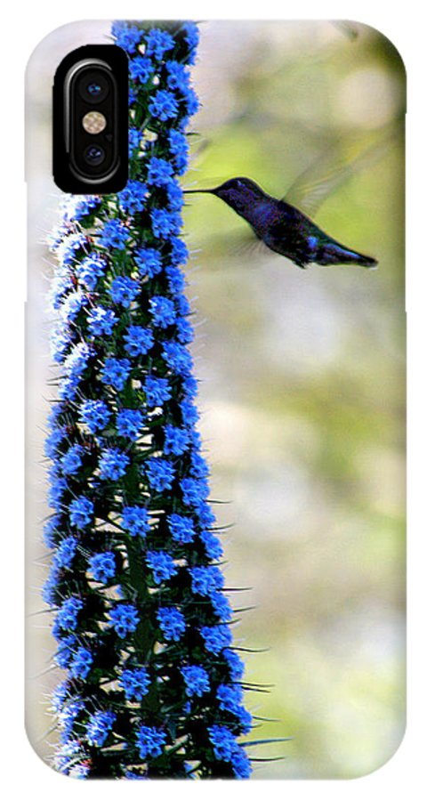 Hummingbird IPhone X Case featuring the photograph Hummingbird And Flower by Diana Haronis