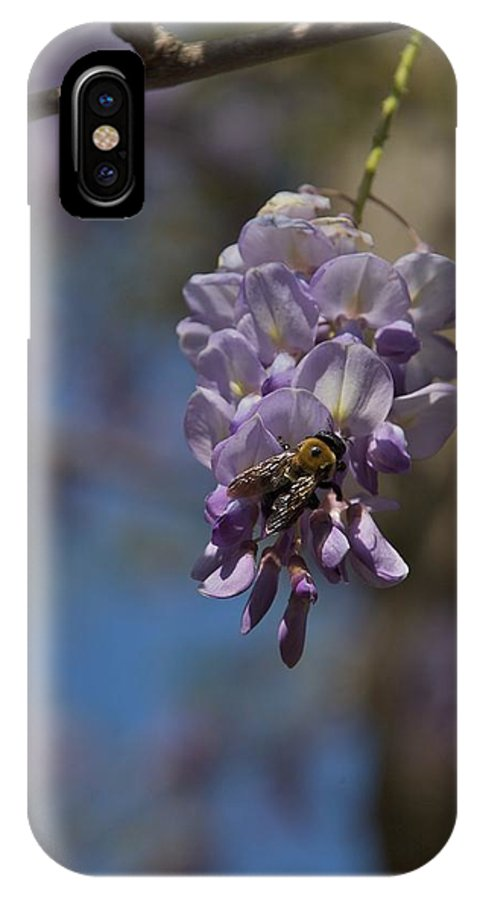 Baily School IPhone X Case featuring the photograph Hunger by Joseph Yarbrough
