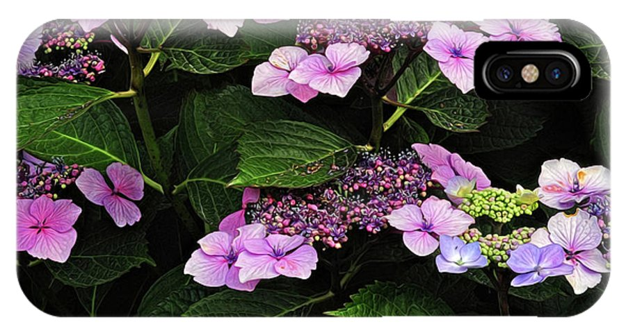 Hydrangea IPhone X Case featuring the photograph Hydrangea by Dave Mills