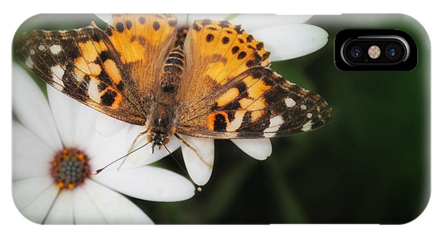 Butterfly IPhone X Case featuring the photograph I Glow by Diane Wood
