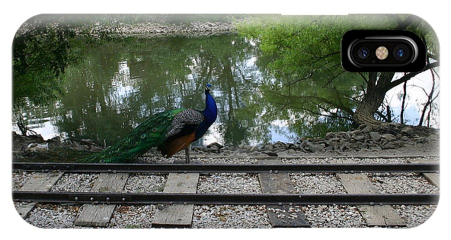 Peacock IPhone X Case featuring the photograph I Think I'm A Train by Nina Fosdick