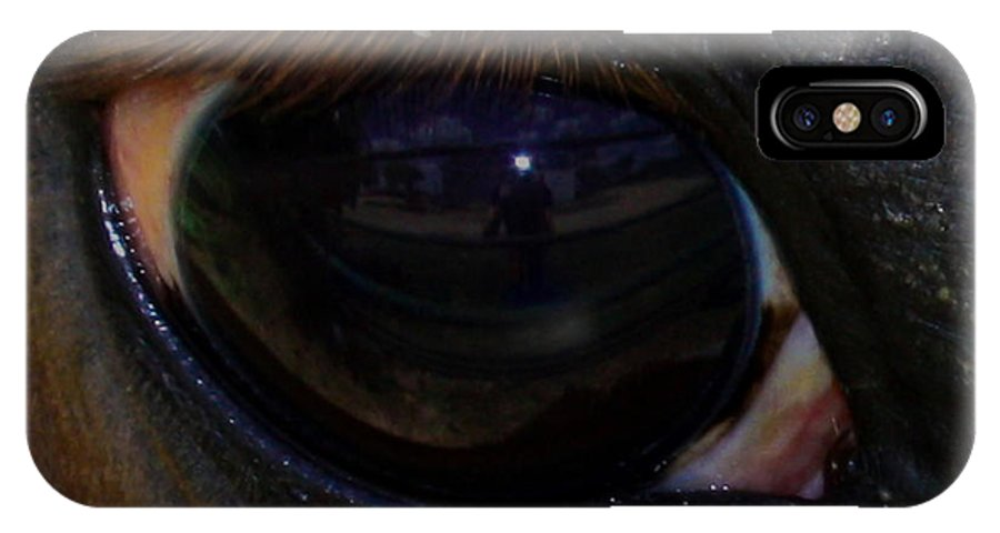Horse IPhone X Case featuring the photograph Immie's Eye by Toma Caul
