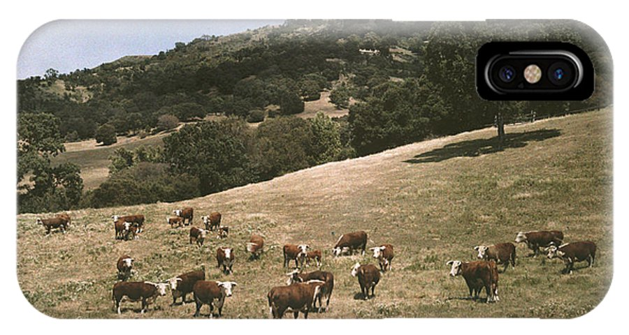 Day IPhone X / XS Case featuring the photograph In A Pasture Near Pleasanton Hereford by Charles Martin