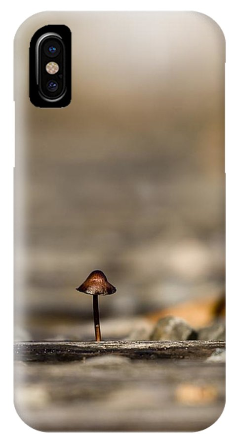 Fungi IPhone X Case featuring the photograph In The Cracks Of The Tracks by Martin Cooper