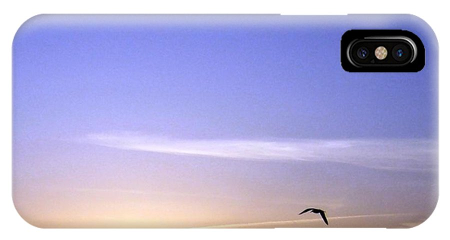 In The Glow Of The Sun IPhone X Case featuring the photograph In The Glow Of The Sun by Will Borden