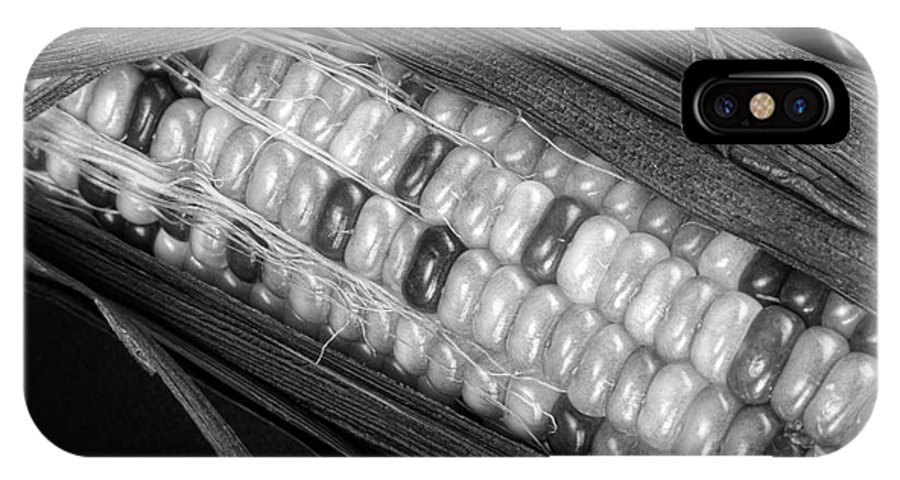 Corn IPhone X Case featuring the photograph Indian Corn Black And White by James BO Insogna