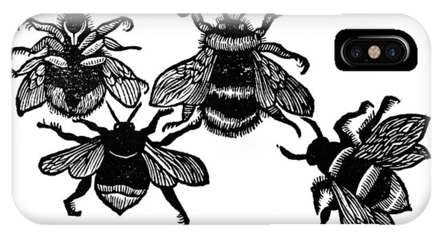 1658 IPhone X Case featuring the photograph Insects: Bees by Granger
