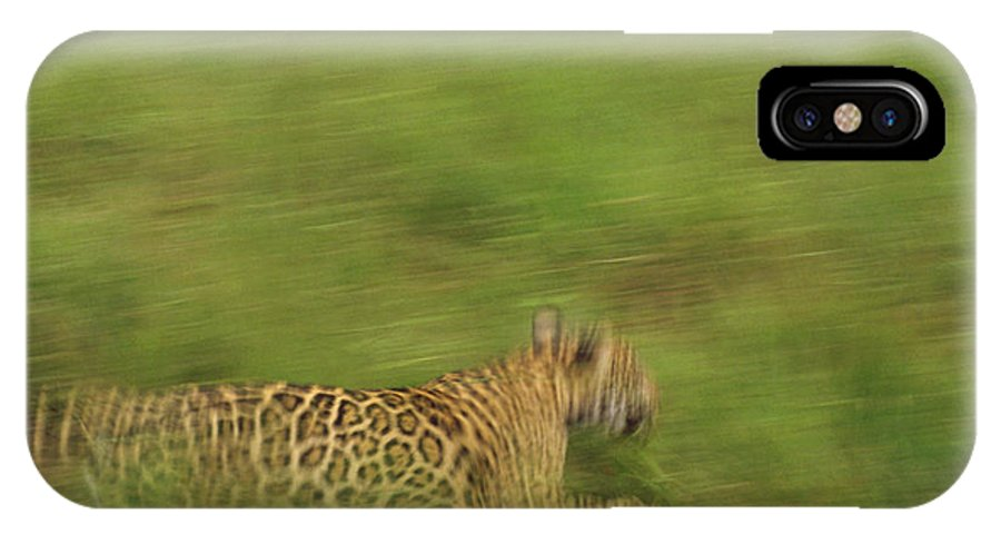 Mp IPhone X Case featuring the photograph Jaguar Panthera Onca Running by Claus Meyer