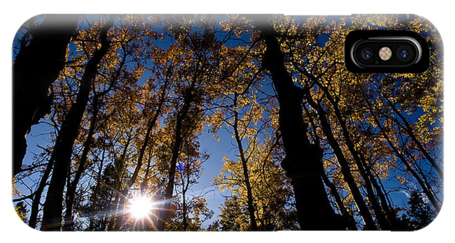 Autumn Season IPhone X Case featuring the photograph Jasper - Autumn Aspens by Terry Elniski