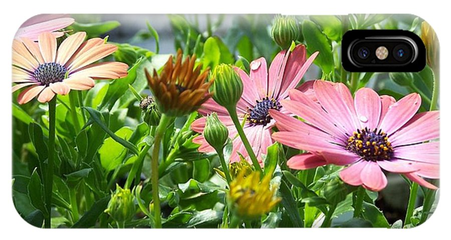Flowers IPhone X Case featuring the photograph Joy by Susan Saver