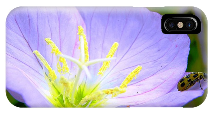 Buttercup IPhone X Case featuring the photograph Jumping Off Spot by Tisha Clinkenbeard