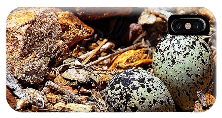 Killdeer IPhone X Case featuring the photograph Killdeer Nest by John Bennett