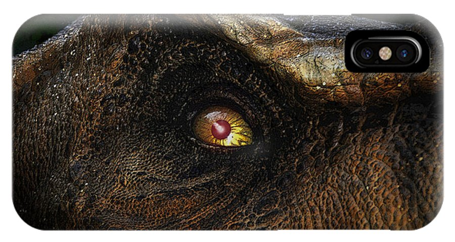 Dinosaur IPhone X Case featuring the painting Last Day Of The Jurassic by David Lee Thompson