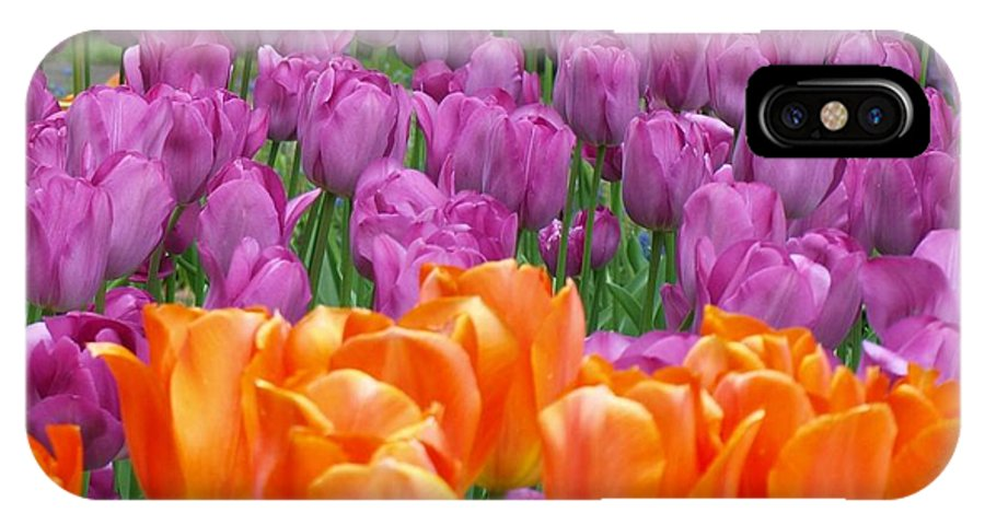 Flowers IPhone X Case featuring the photograph Lavender And Orange Tulips by Larry Krussel