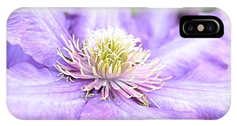 Flowers IPhone X Case featuring the photograph Lavender Clematis Flower by P S