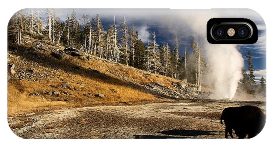 Yellowstone National Park IPhone X Case featuring the photograph Leaving The Show by Adam Jewell