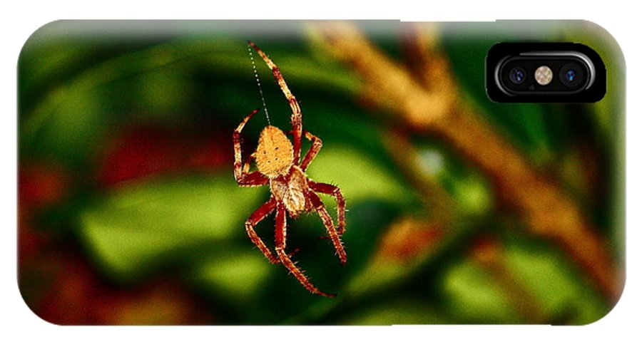 Insects IPhone X Case featuring the photograph Let The Work Begin by Diana Hatcher
