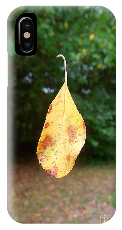 Leaf IPhone X Case featuring the photograph Levitation by Renee Trenholm