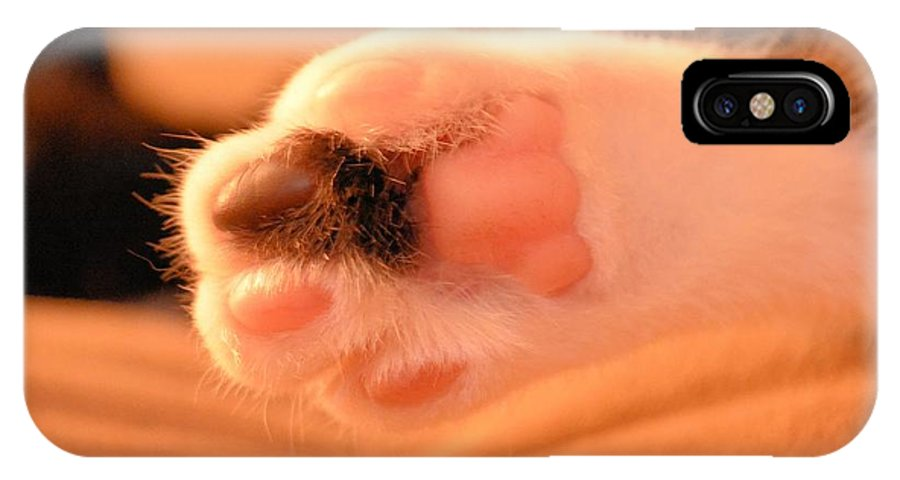Foot IPhone X / XS Case featuring the photograph Little Foot by Melissa Goodrich