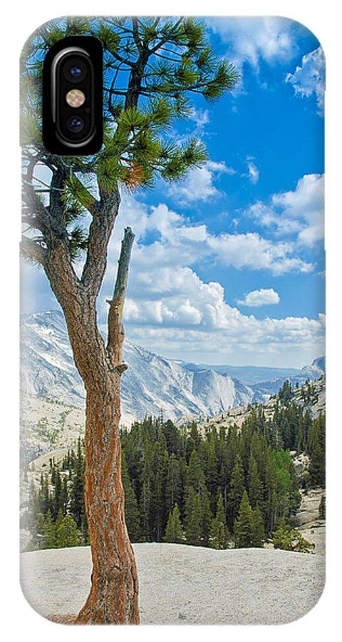 Usa IPhone X Case featuring the photograph Lone Pine At Half Dome by LeeAnn McLaneGoetz McLaneGoetzStudioLLCcom