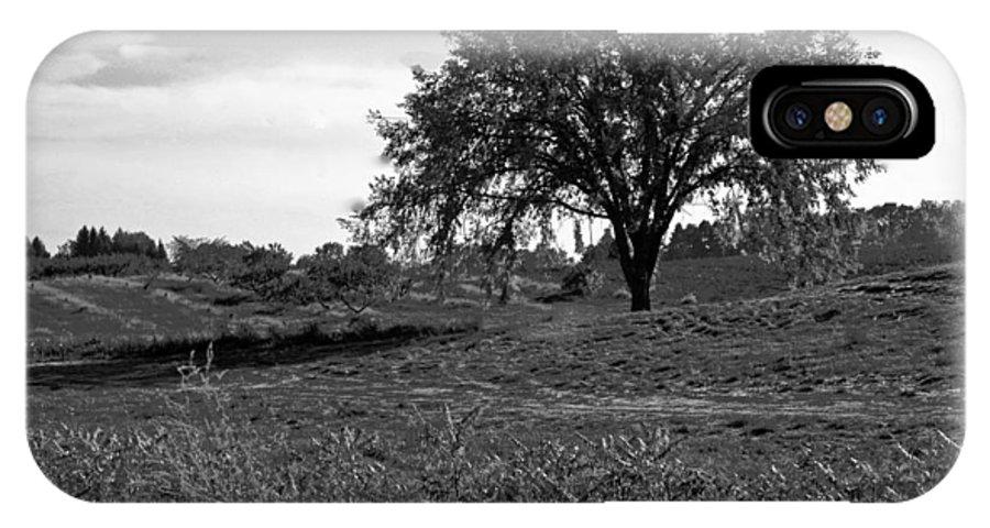 Usa IPhone X / XS Case featuring the photograph Lone Tree by LeeAnn McLaneGoetz McLaneGoetzStudioLLCcom