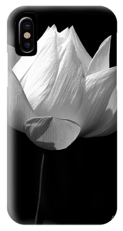 Floral IPhone X Case featuring the photograph Lotus Bw by Mark Gilman