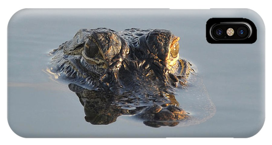 Wildlife Photography IPhone X Case featuring the photograph Lurking by David Lee Thompson