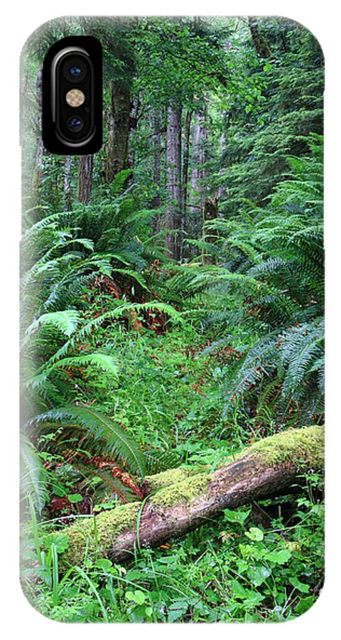 Olympic IPhone X Case featuring the photograph Lush Rain Forest In Olympic National Park by Pierre Leclerc Photography