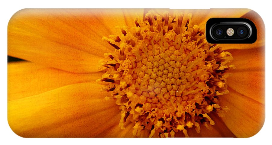 Flower IPhone X Case featuring the photograph Macro Flower by Smilin Eyes Treasures