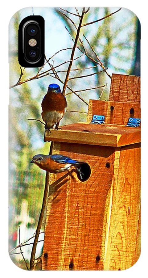Bluebird IPhone X Case featuring the photograph Mama Leaving by William Fields