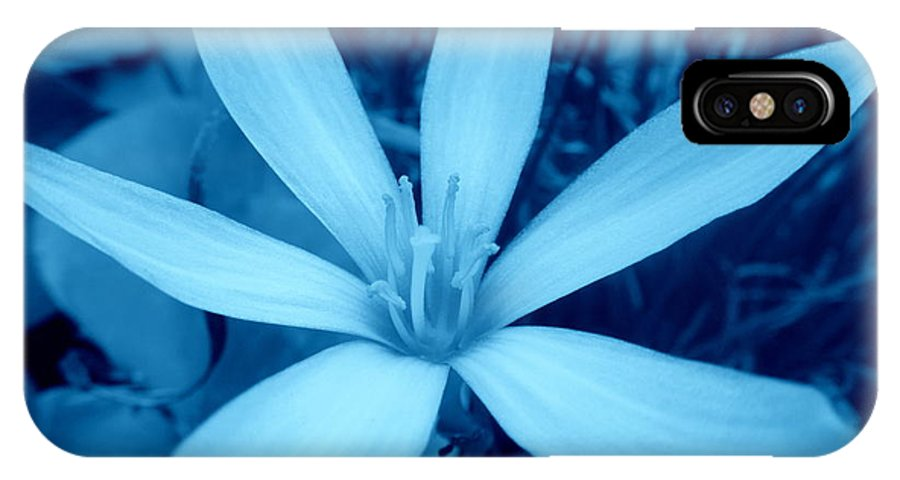 Marsh IPhone X Case featuring the photograph Marsh Grass Flower In Blue by Renee Trenholm